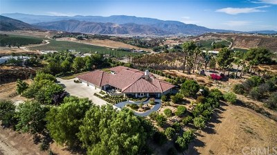 Temecula Single Family Home For Sale: 38600 De Portola Road