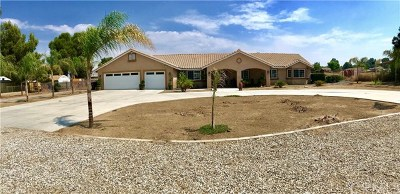 Nuevo/lakeview Single Family Home For Sale: 30650 Rancho Road