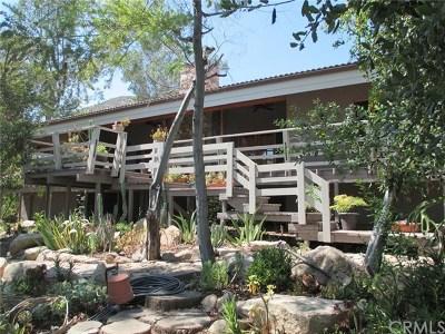 Lake Elsinore Single Family Home For Sale: 33290 Lorimer Street