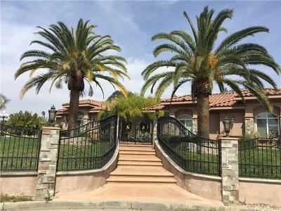 Riverside CA Single Family Home For Sale: $1,295,000