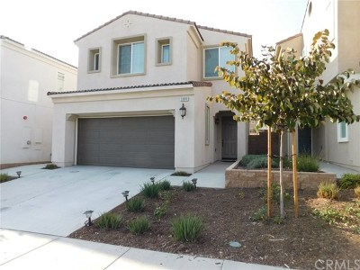 Yucaipa Single Family Home For Sale: 33810 King Drive