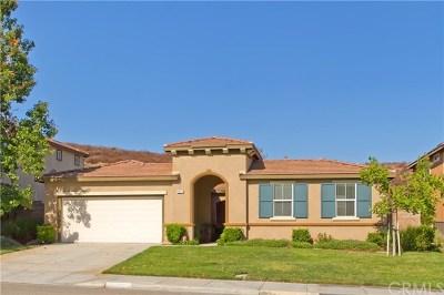 Murrieta Single Family Home For Sale: 38215 Encanto Road