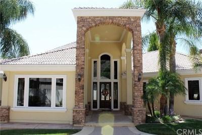 Murrieta Single Family Home For Sale: 22117 Twin Oaks Court