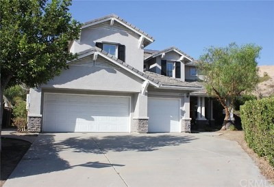 Murrieta Single Family Home For Sale: 41895 Brook Court