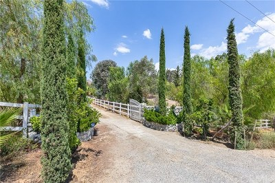 Temecula Single Family Home For Sale: 38090 Mesa Road