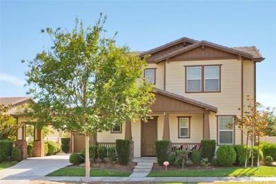 Temecula Single Family Home For Sale: 27243 Dayton Lane