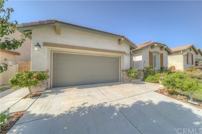 Murrieta Single Family Home For Sale: 31619 Desert Holly Place