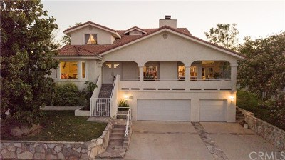 Canyon Lake Single Family Home For Sale: 30701 Pyramid Point Drive