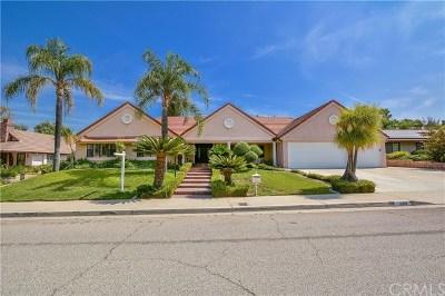 Redlands Single Family Home For Sale: 1609 Crestview Road