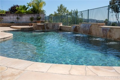 Escondido Single Family Home For Sale: 678 Ridgemont Circle