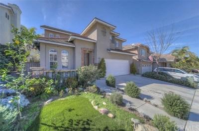 Chula Vista Single Family Home For Sale: 1354 Vallejo Mills Street