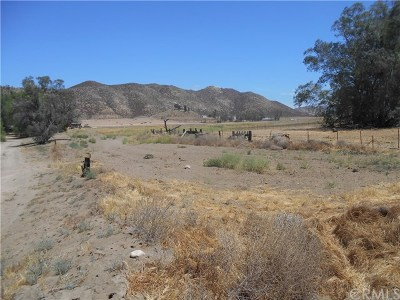 Hemet Residential Lots & Land For Sale: Palm Avenue