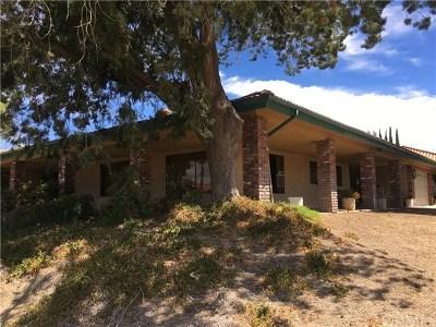 Hemet Single Family Home For Sale: 43720 Mandarin Drive