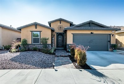Lake Elsinore Single Family Home For Sale: 29149 Black Oak