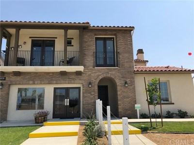 Redlands Single Family Home For Sale: 26545 Citrus Avenue