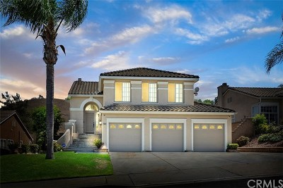 Chino Hills Single Family Home For Sale: 2039 Paseo Grande