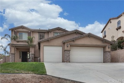 Lake Elsinore Single Family Home For Sale: 29268 Sandpiper Drive