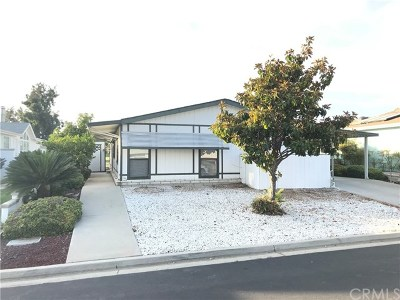 Murrieta Single Family Home For Sale: 29070 Calle Del Buho