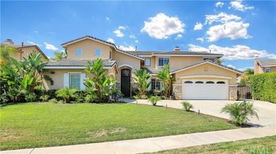 Corona Single Family Home For Sale: 1610 Via Roma Circle