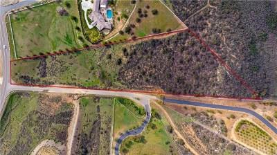 Murrieta Residential Lots & Land For Sale: 2 Kings Circle