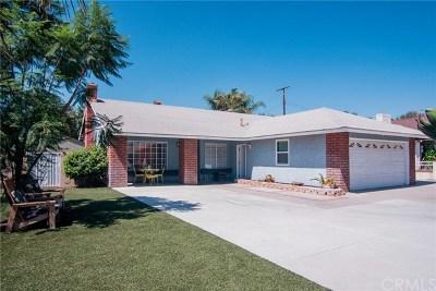 San Bernardino Single Family Home For Sale: 800 San Carlo Avenue