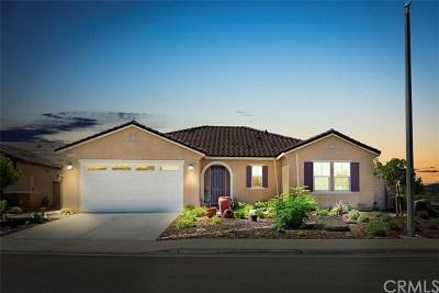 Menifee Single Family Home For Sale: 25215 Desperado Court