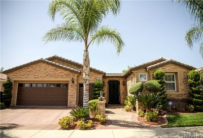 Hemet Single Family Home For Sale: 457 Olazabal Drive