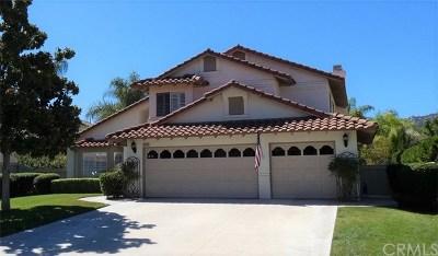 Temecula Single Family Home For Sale: 31851 Via Saltio