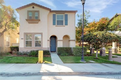 Chino Single Family Home For Sale: 6839 Rockrose Street