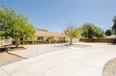 Menifee Single Family Home For Sale: 30720 Stern Drive