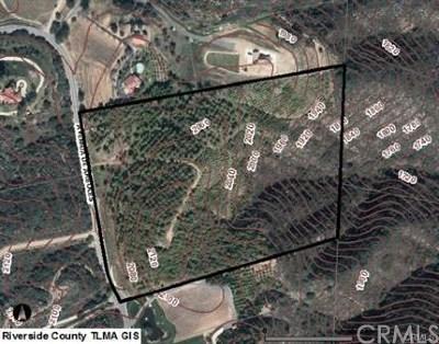 Murrieta Residential Lots & Land For Sale: 2043 Avenida De Arboloes