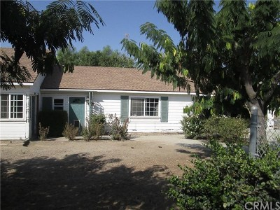 Hemet, San Jacinto Single Family Home For Sale: 1250 Eaton Avenue