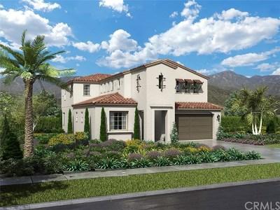 Murrieta Single Family Home For Sale: 30795 Belmont Heights
