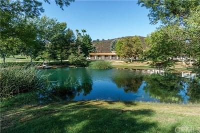 Murrieta, Temecula Single Family Home For Sale: 40825 Sierra Maria Road