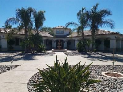 Menifee Single Family Home For Sale: 29935 Maxine Lane