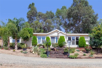 Temecula Single Family Home For Sale: 40205 Meng Asbury Road