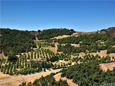 Temecula Residential Lots & Land For Sale: Avenida Tierra