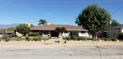 Hemet Single Family Home For Sale: 27366 Ida Lane