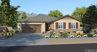 Menifee Single Family Home For Sale: 29076 Redwood Street