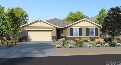 Menifee Single Family Home For Sale: 29170 Redwood Street