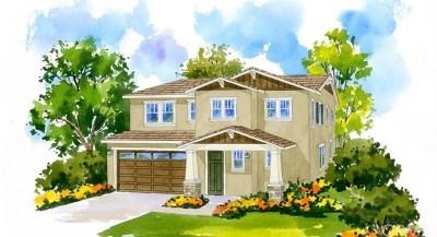 Fontana Single Family Home For Sale: 6379 Blustone Street