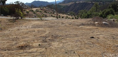 Temecula Residential Lots & Land For Sale: 45 Buena Vista Road