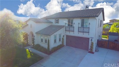 Temecula Single Family Home For Sale: 46191 Hunter Trail