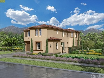 Murrieta Single Family Home For Sale: 30735 Belmont Heights