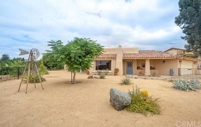 Hemet, San Jacinto Single Family Home For Sale: 44604 Adobe Drive