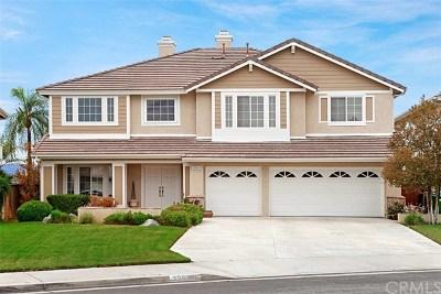 Murrieta Single Family Home For Sale: 39651 Bayonne Place