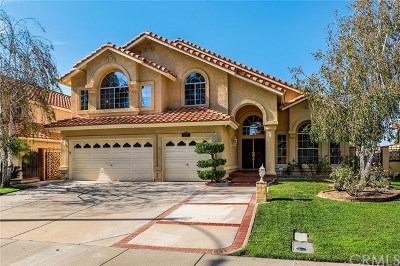 Temecula Single Family Home For Sale: 31584 Paseo Goleta