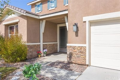 Wildomar Single Family Home For Sale: 36207 Trail Creek Circle