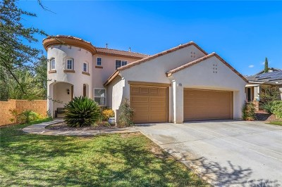 Murrieta Single Family Home For Sale: 27579 Paper Bark Avenue