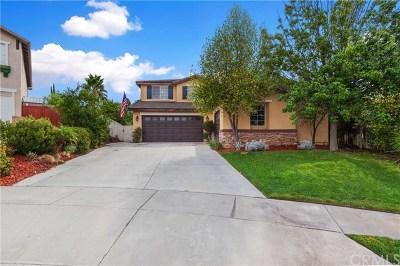 Murrieta Single Family Home For Sale: 42740 Oak View Place